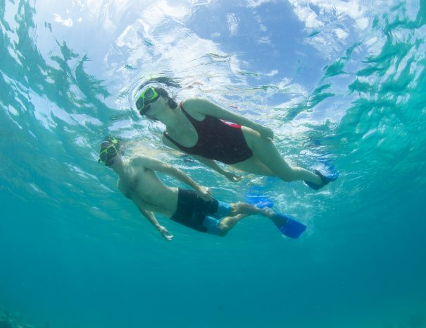 Gallows Point Snorkeling